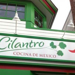 Cilantro (vegetarian review)