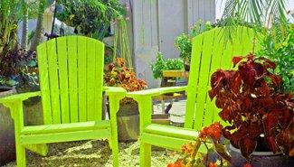 TOMATO yellow chairs rf
