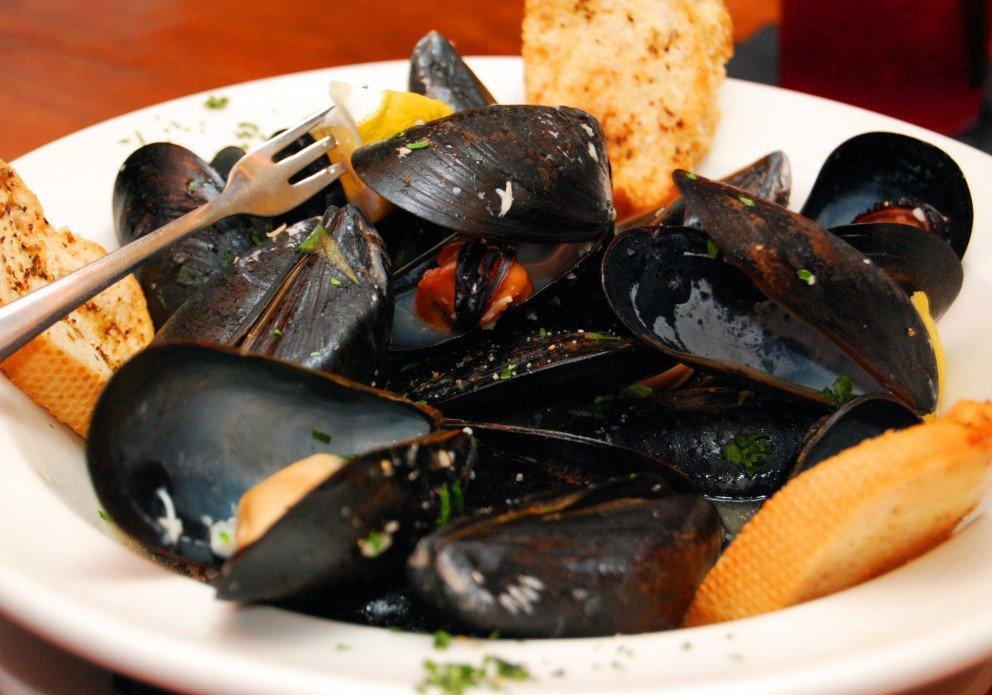 Mussels appetizer