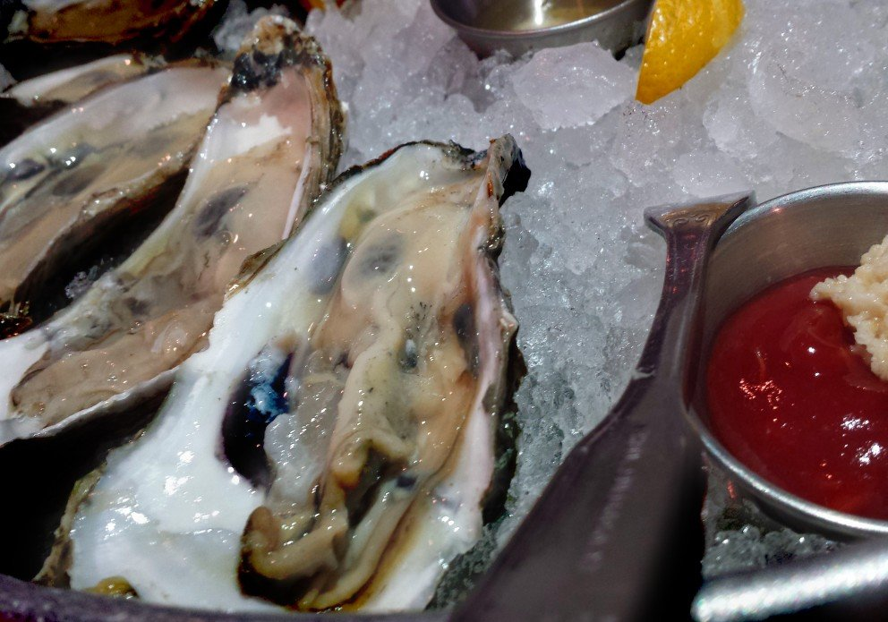 Fins Ale House & Raw Bar | View More Photos