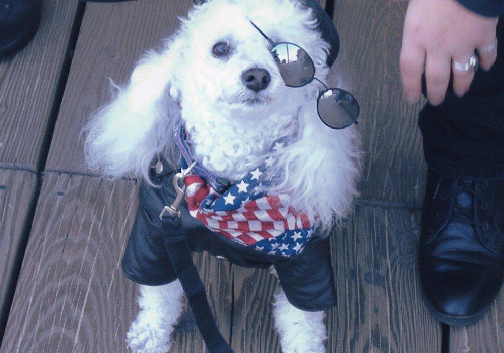 Boardwalk Tuff Guy