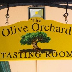 Olive Orchard Open
