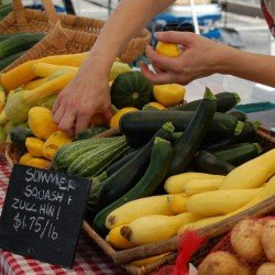 Visit the Farmers' Markets