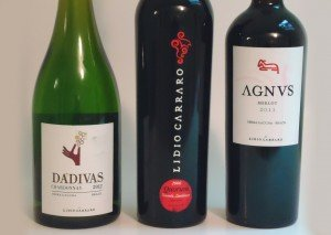 Brazilian Wines — Who Knew!? | View More