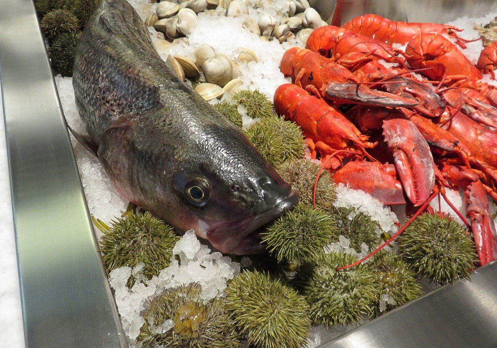 Chesapeake maine F&F fish and lobster on icecrenh