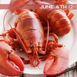 Lobster Bake 6/4