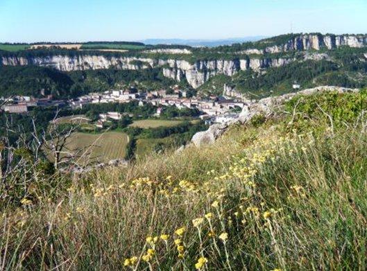 Roquefort combalou caves