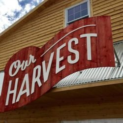 Our Harvest Open