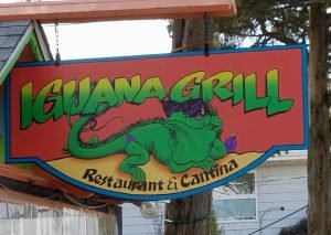 New Iguana Open | View More