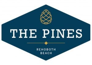 Revamped Space for The Pines