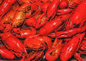 PO'BOYS CRAWFISH BOIL 6/3
