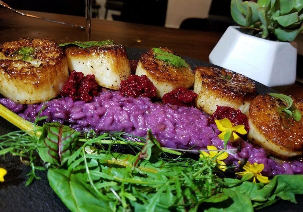 PINES scallops with purple risottocrenhsized